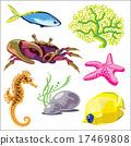 螃蟹 蟹 海洋 17469808
