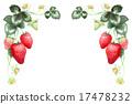 水果 草莓 圖框 17478232