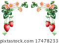 水果 草莓 圖框 17478233