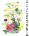 花朵 植物人 植物的 17478235