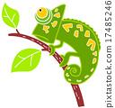矢量 變色龍 爬行動物 17485246