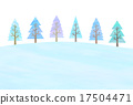 coniferous, tree, winter 17504471