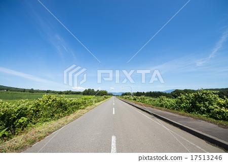車道 直路 鋪路 17513246