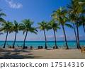 ヤシの木の並ぶトロピカルビーチ 17514316