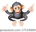 Thumbs Up Pointing Monkey Chimp 17530889