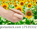paintbrush pants yellow petals of sunflower 17535332