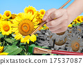 yellow petals and green leaves of sunflowers 17537087