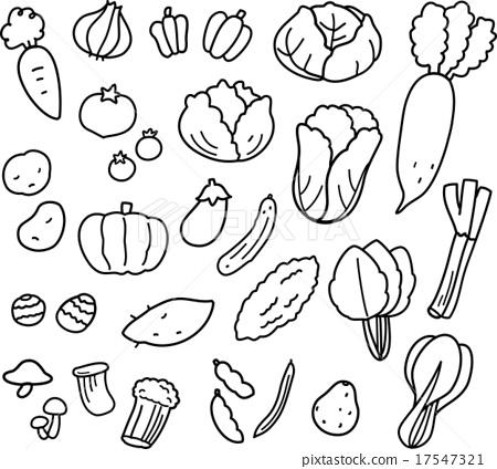 ผักต่างๆ (วาดเส้น) - ภาพประกอบ ...