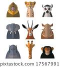 animals, animal, hippopotamus 17567991