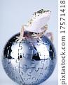 Gecko in globe, bright colorful vivid theme 17571418