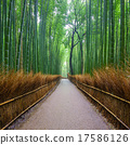 Path to bamboo forest, Arashiyama, Kyoto, Japan. 17586126