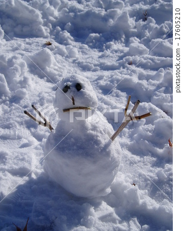 눈사람 17605210