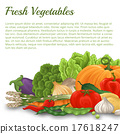 Vegetable background 17618247