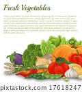 Vegetable background 17618247