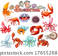 Different kind of sea animals 17655268