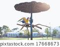 鳳頭鸚鵡 鸚鵡 長尾鸚鵡 17668673