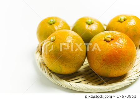 Vegetable Orange Dai Dai Ponzu 17673953