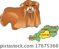 지도 동물 히로시마 사자 17675366
