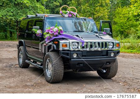 wedding car 17675587