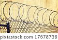 惩罚 刺 金属线 17678739