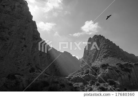Stock Photo: Bird flies over mountain landscape