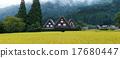rice, field, panorama 17680447