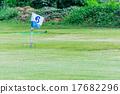 綠色 練習 運動 17682296