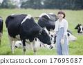 ผู้หญิงทำงานในฟาร์ม 17695687