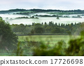 hill, meadow, fog 17726698