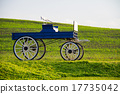 Historic carriage on green grass field 17735042