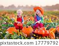 Kids picking pumpkins on Halloween pumpkin patch 17779792