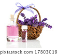 향기, 꽃, 라벤더 17803019