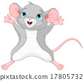 rat mice mouse 17805732