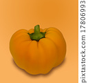 Pumpkin Vegetable with Shadow 17806993