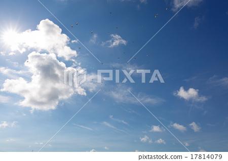 藍天與鳥群 17814079
