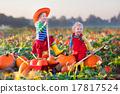 Kids picking pumpkins on Halloween pumpkin patch 17817524