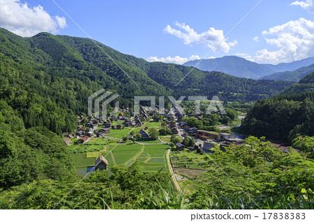 shirakawa-go, shirakawago, having a steep thatched rafter roof 17838383