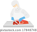vector, vectors, edible meat 17848748