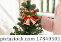 聖誕樹 耶誕節 尤爾 17849301