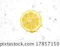 레몬 씨즐 17857150