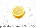 레몬 씨즐 17857222