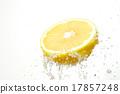 葡萄柚 橫斷面 割 17857248