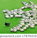 black sheep in the flock 17876430