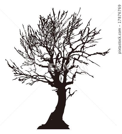 Dead tree tree Dead tree silhouette 01 17876769