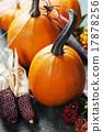 Autumn pumpkins 17878256