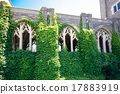 cornell university, campus, ivy 17883919
