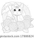 猫 猫咪 绣球 17886824