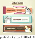 벡터, 동물, 교육 17887410