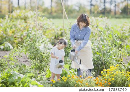 园艺 父母身份 父母和小孩 17888740
