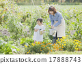 gardening, parenthood, parent and child 17888743